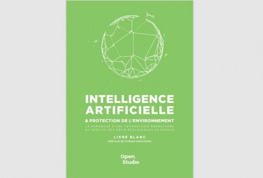 Livre Blanc Intelligence artificielle